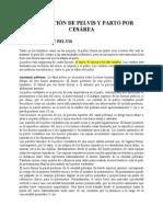 VALORACIÓ DE PELVIS Y PARTO POR CESÁREA