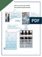 ANALISIS CUALITATIVO DE ANIONES (1).docx