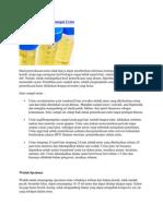 Teknik Pengumpulan Sampel Urine