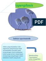 Aspergillus Sp 2012-2013