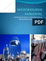 S1.-Ecologìa Microbiana y Microbiologìa Ambiental