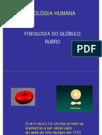 Fisiologia_do_Glóbulo_Vermelho