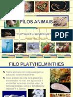 apres_platelmintos