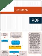 L – BLUM DM