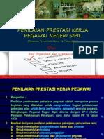 SKP_PNS