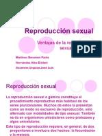 presentación de la reproducción sexual
