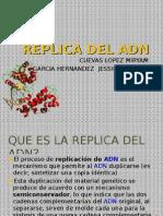 Replica Del Adn