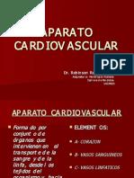 h. Cardiovascular. e. (25.08.09)