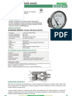 Bg-differential Pressure Gauge