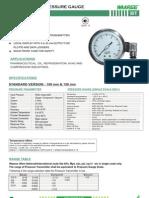 Bt-transmitter Pressure Gauge