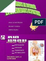 Enfermedades Respiratorias Fv- Fleming Corregido[1]