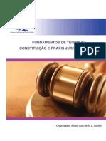 Fundamentos de Teoria Da Constituicao e Praxis Jurisdicional v II