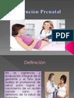 Atencion Prenatal y Periodo de Parto Saory Bonnie