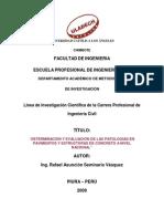 Linea de Investigacion Patologia Concreto Completa