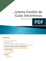 Manual Sistema Gestión de  Guías Electrónicas