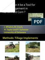 Tillage and Slug Management in No Till Corn Whalen