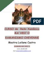 Reiki-Xamanico-MA´HEO´O