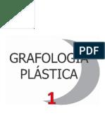 Manual grafología 1.pptx
