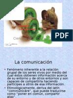 13694996 El Proceso de La Comunicacion