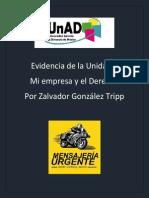 IDE_U1_EU_ZAGT
