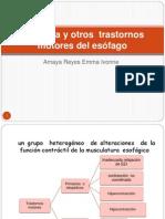 Acalasia y otros  trastornos motores del esófago