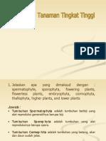Klasifikasi Tanaman Tingkat Tinggi 1