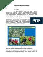 Actividad 1. Agroecologia, una solución sustentable.