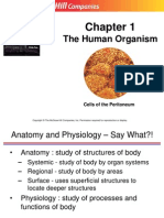 01 Lecture Human Organism (2)