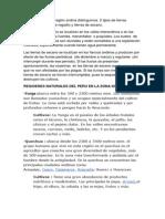AGROTECNIA.docx