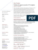 Technical Support Executive CV Template