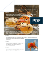 How to Identify Bubble Eye Goldfish
