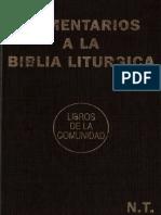 Comentario litúrgico lecturas