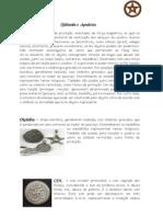Talismãs e Amuletos