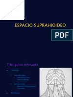 espaciosuprahioideo-101130180527-phpapp022