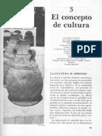 003SerenaNanda-ElConceptoDeCultura