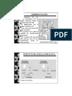 2_amminoacidi.pdf