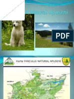 Www.nicepps.ro 5899 Parcul Natural Apuseni
