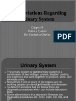 5abbreviationsregardingurinarysystem-091027160740-phpapp02