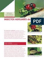 Insectos Auxiliares Da Agricultura