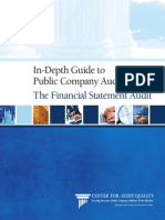 In Depth Guide to Public Company Auditing