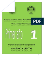 Anatoma Dental 2013