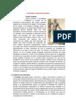 anatomia-fisiologia-humana