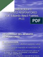Aparato Respiratorio Embriologia II
