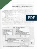 Patologia esofagiana functionala