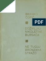 Branko Copic Dozivljaji Ne Tuguj