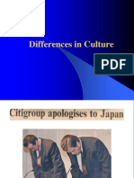 (3)Cultural Differences