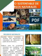 Manejo Sustentable de Recursos Naturales