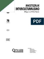 Libro Mestizaje e interculturalismos