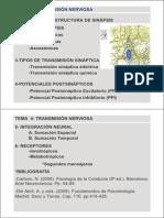 Tema 4. Transmision Sinaptica