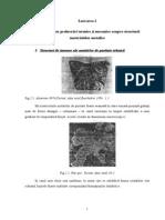 Lucrarea 2 Influen-A Unor Prelucr-ri Termice